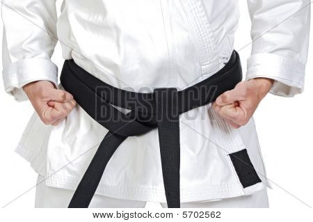 Martial Arts Pose