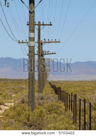 Fence-pwlines