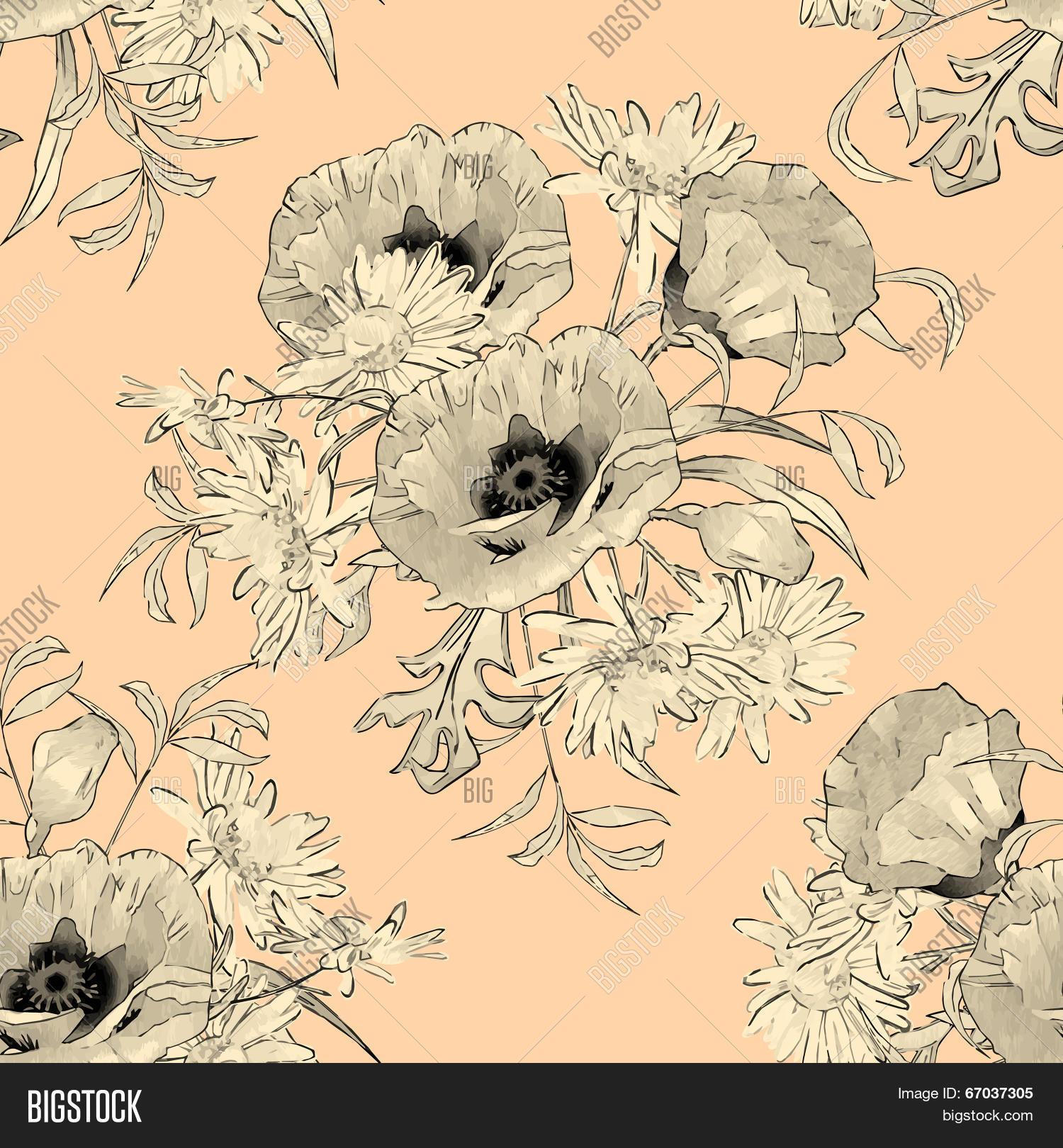 Hand Drawn Flowers Vector Photo Free Trial Bigstock