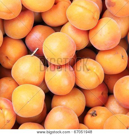Ripe Fresh Peaches (prunus Mume Or Japanese Apricot)