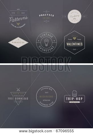 39 Trendy Retro Vintage Insignias Bundle Volume 2