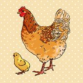 Realistic broody chicken and baby chick, isolated poster