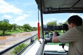 Safari vacation. Professional photographer taking picture on game drive in Tarangire national park Tanzania. Elephants on packground. poster