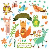 Vector Set of Cute Woodland and Forest Animals.Squirrelrabbit nightingale frog deer owl bird butterfly.(All objects are isolated groups so you can move and separate them) poster