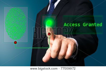 Business Person Working With Screen