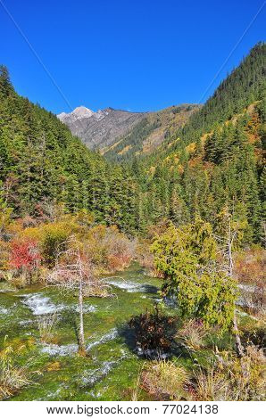 Streaming water at mountainous area in Jiuzhaigou poster