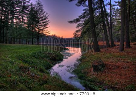 Remote Forest Lake Sunset