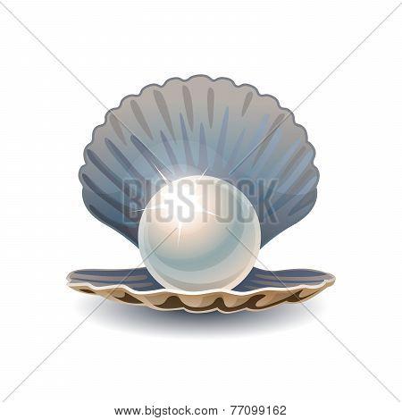 Shiny pearl in opened seashell