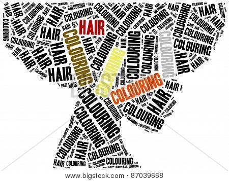 Hair Colouring. Word Cloud Illustration.
