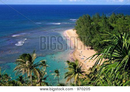 Beautiful Beach On Kauai
