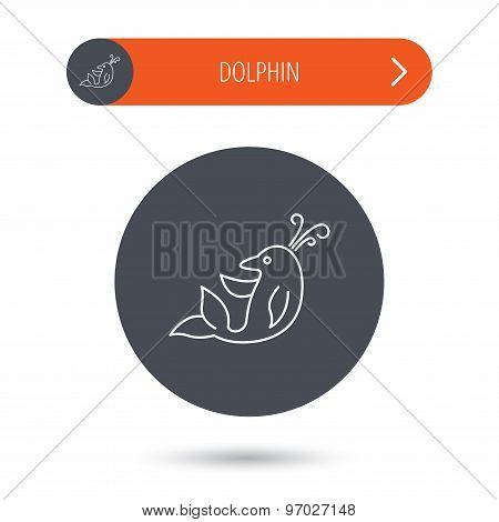 Dolphin icon. Cetacean mammal sign.