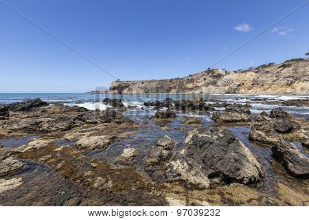Tidal pools at Abalone Cove in Southern California.