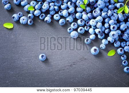Blueberry border design. Blueberries background. Ripe and juicy fresh picked blueberries closeup. Copyspace for your text.