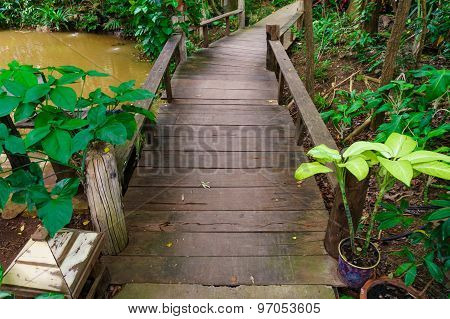 Pathway In The Garden. Stock Photo