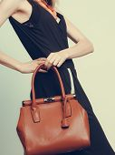 Elegant fashionable woman with leather handbag. Stylish girl holding brown bag. Female fashion vogue. Studio. Instagram filter. poster