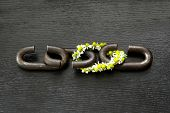 a chain is only as strong as its weakest link proverb one link made of flowers poster