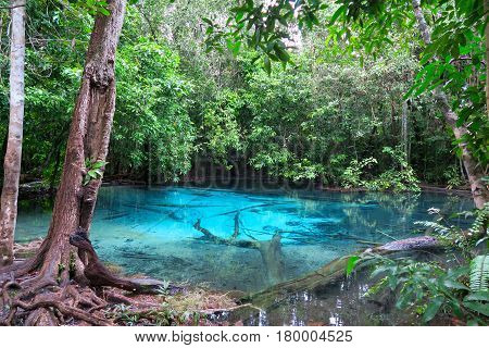 beautiful and clear very blue water pool Thailand