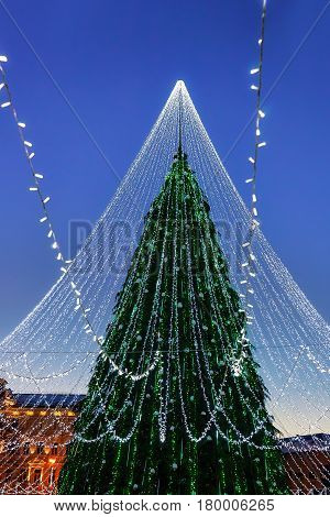 Christmas Tree With Garlands Installed In Vilnius Of Lithuania