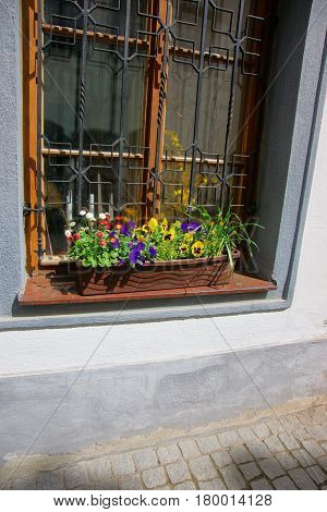 Window With Flowers In Old City Center Of Cesky Krumlov