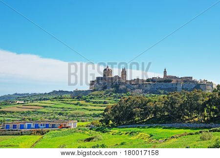 Skyline Of Mdina With Saint Paul Cathedral