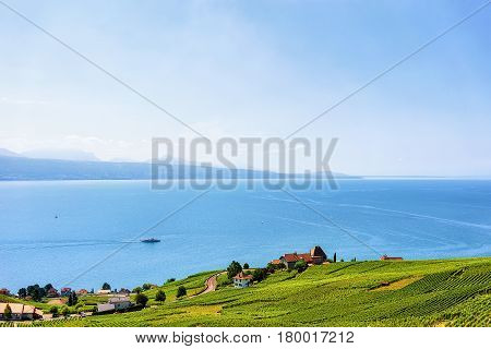Swiss Houses At Lavaux Vineyard Terrace Hiking Trail In Switzerland