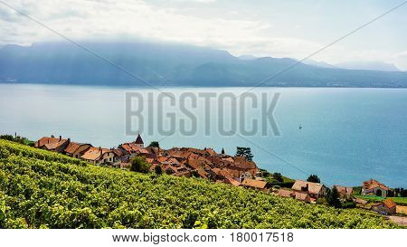 Swiss Village At Lavaux Vineyard Terrace Hiking Trail In Switzerland