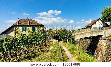 Chalets In Lavaux Vineyard Terraces Hiking Trail Lavaux Oron