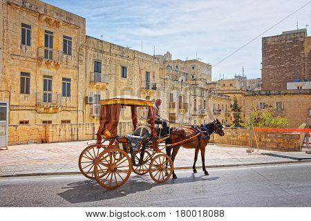 Horse Carriage At Saint Elmo Fort Of Valletta Malta