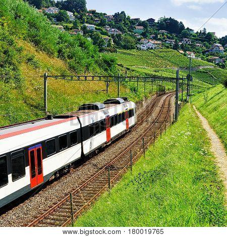 Running Train At Vineyard Terraces Of Lavaux Swiss