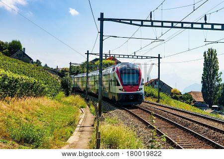 Running Train In Vineyard Terrace Of Lavaux In Switzerland