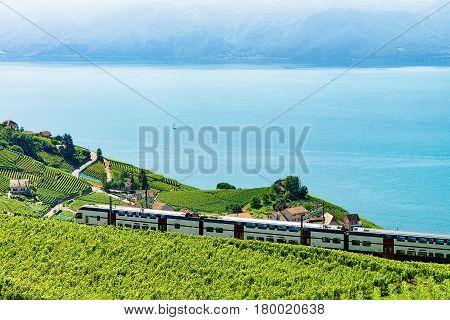 Train At Vineyard Terraces In Lavaux At Lake Geneva Alps