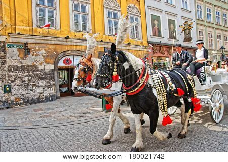 Horse Fiacre And People At Old Town In Krakow
