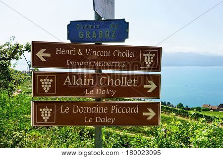Sign Plates At Vineyard Terraces Trail Of Lavaux Of Switzerland