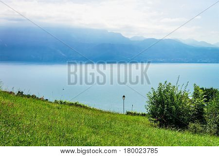 Nature in Lavaux Lavaux-Oron district of Switzerland