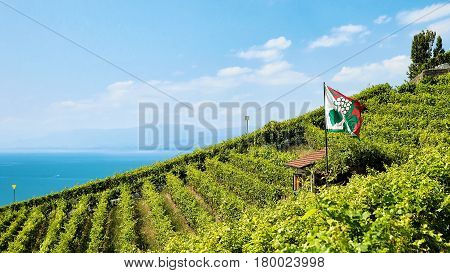 Shelter House With Flag At Vineyard Terraces Lavaux Switzerland