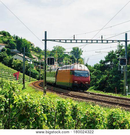 Train And Railroad In Lavaux Vineyard Terrace