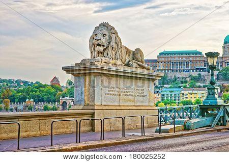 Lion Sculpture On Szechenyi Chain Bridge In Budapest