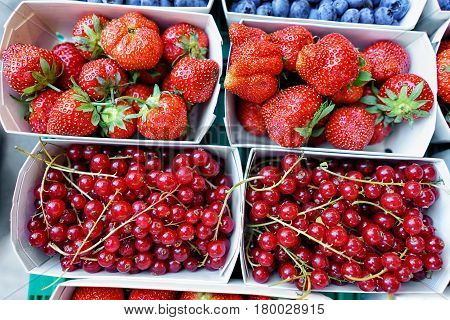 Mix Of Fresh Strawberry And Garden Currant