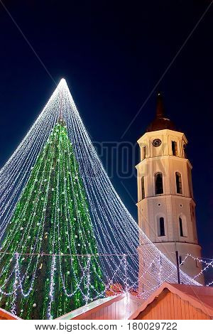 Christmas Tree And Bell Tower Vilnius In Evening