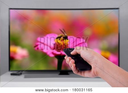 Hand Holding Tv Remote Control With A Television And Nature Screen