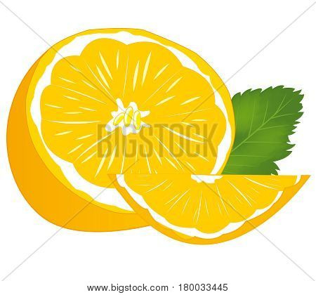 Ripe cut tangerine on white background is insulated