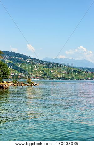 People Swimming And Sunbathing At Lake Front Of Lausanne