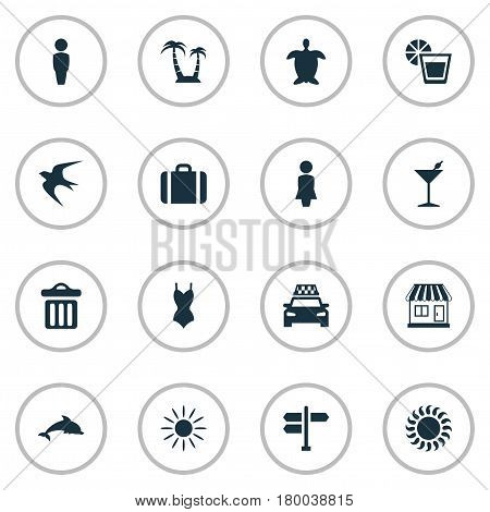 Vector Illustration Set Of Simple Seaside Icons. Elements Swallow, Tortoise, Beverage And Other Synonyms Party, Beachwear And Baggage.