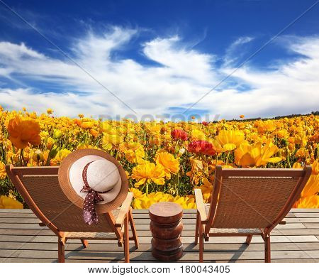 Pair of wooden sun loungers next to fields of garden buttercups. The concept of recreation and eco-tourism. Elegant women's straw hat hanging on a chair