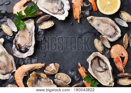 Fresh seafood on stone table. Oysters, prawns and scallops. Top view with copy space