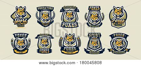 A collection of colorful logos, emblems, fox head, cunning and dangerous predator, the forest dweller. Vector illustration, dynamic and sporty style, printing on T-shirts