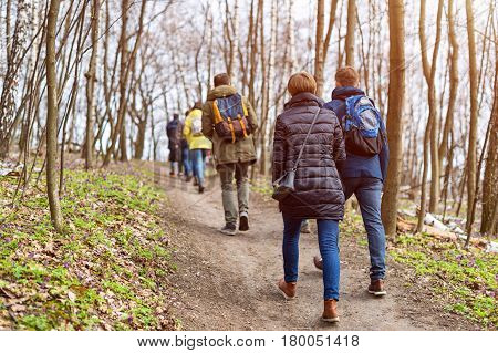 Group of friends walking with backpacks in spring forest from back. Backpackers hiking in the woods. Adventure, travel, tourism, active rest, hike and people friendship concept