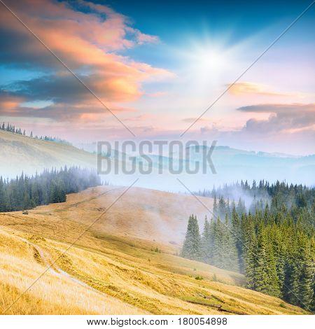 Carpathian Mountain Valley_5