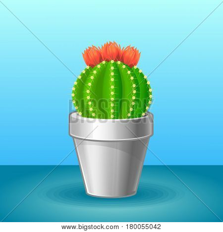 Organic exotic plant concept with blooming sharp cactus in flowerpot on light background isolated vector illustration