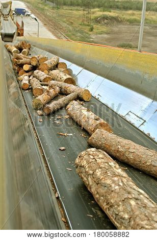 Close up Lumber industry - conveying belt